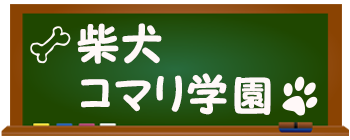 柴犬コマリ学園