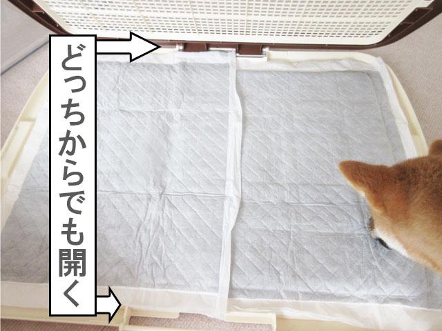 柴犬 ボンビ しつけるトレーメッシュプラス
