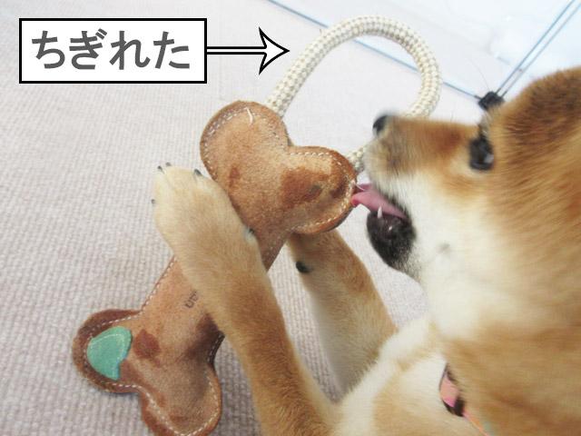 犬のおもちゃ 牛革アニマルトイ