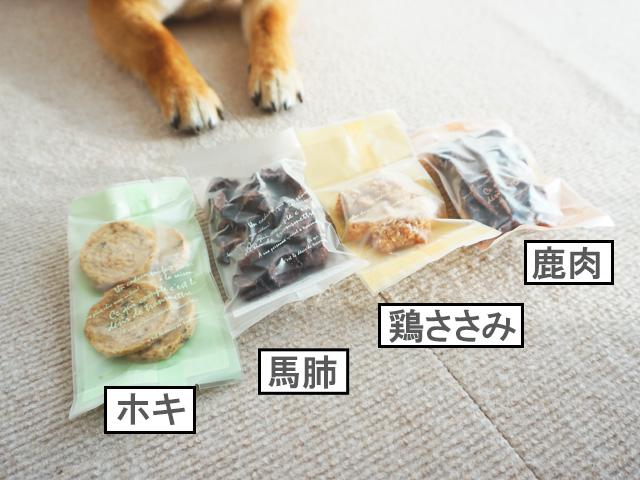 柴犬コマリ バレンタイン 犬用