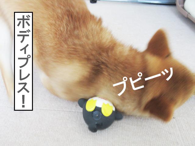 柴犬コマリ やわらかTOY