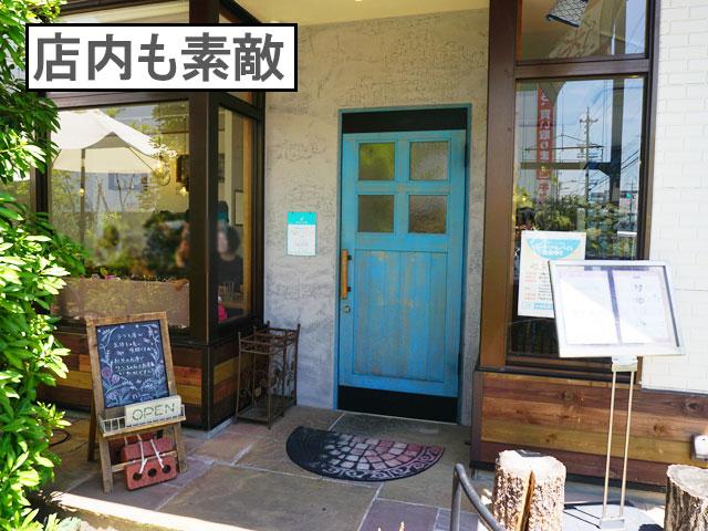 柴犬コマリ 守山区 niwacafe