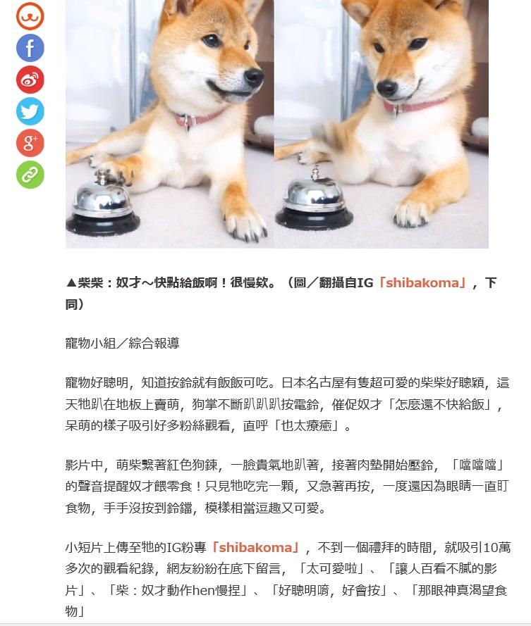 柴犬コマリ 台湾 ETtoday