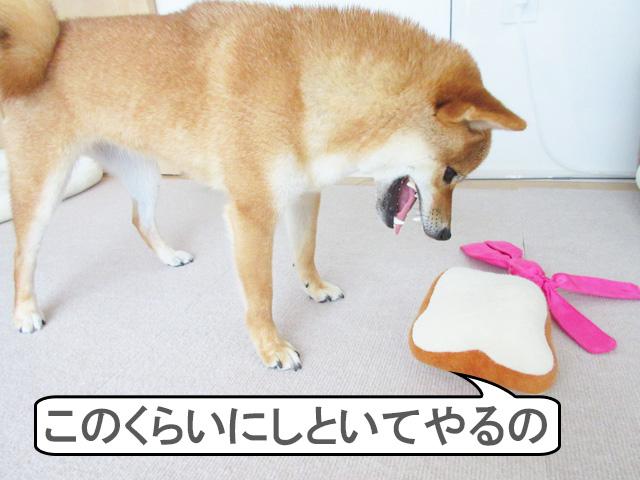 柴犬コマリ 食パン
