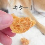 柴犬コマリ ヒマラヤチーズ ラスク