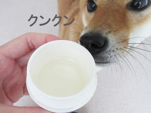 柴犬コマリ パナズー パウケアクリーム