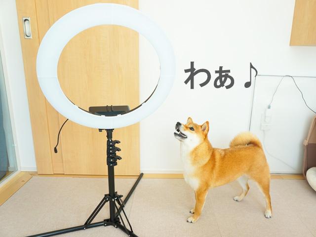 TikTok優勝賞品 撮影用照明